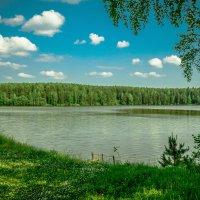 Летний день :: Евгений Ломко