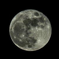 moon :: Михаил