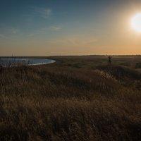 Камышеватская коса Азовское море :: Сергей Канашин