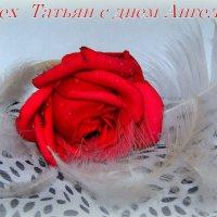 Поздравление всем Татьянам,Танечкам,Танюшам!!!!!!!!!!!! :: Павлова Татьяна Павлова