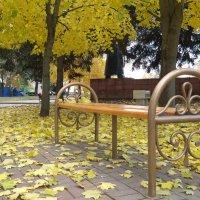 Осень в парке :: Сергей Махонин
