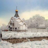 Январские морозы :: Владимир Колесников