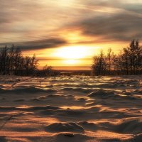 зимний вечер :: Светлана