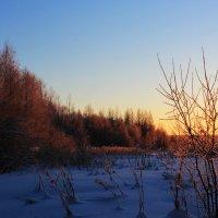 На закате :: Евгений Карелин