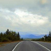 Дорога на Харп :: Tata Wolf
