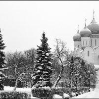 Снежная зима :: Николай Белавин