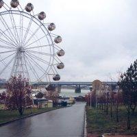 Бесфундаментное колесо :: Евгения Латунская