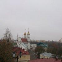 Вид с площадки Успенского собора. :: Подруга Подруга