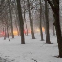 Туманный вечер.... :: Леонид Соболев