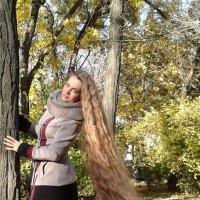 Осень :: Алла Перькова