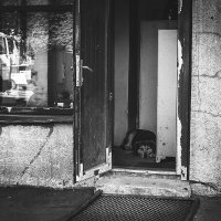 Пёс :: Артемий Кошелев