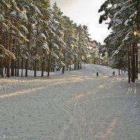 Солнечным днём на Пике Тяпкина. :: Виктор Евстратов