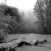 зима :: Dasha Dasha