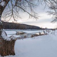 У декабрьской реки :: Любовь Потеряхина