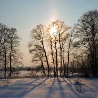 Тени зимой :: Pavel Stolyar