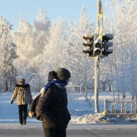 пешеходы :: Елена Шмойлова