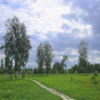 В городском парке. :: Мила Бовкун