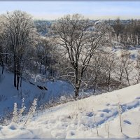 Зимний пейзаж. :: Роланд Дубровский
