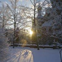 Мороз и солнце... :: Милана Гресь