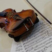 Violin.... :: Fidel Nekastro