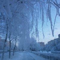 Снег идёт... :: Алёна Савина