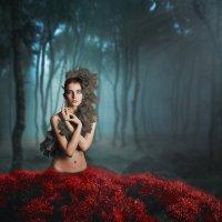 Туманный лес :: Татьяна Михайлова