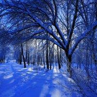синий снег :: Дмитрий Потапов