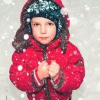 снегопад :: Irina Novikova