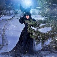 Зимняя Ночь :: Еления Харченко