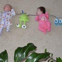 Двойняшки сушатся :: Ирина Артемова