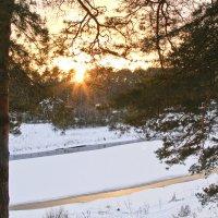 Одажды зимой... :: Наталья Семиколенных