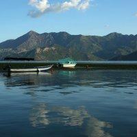 Черногория.Скадарское озеро. :: Андрей Криштопенко
