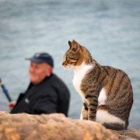 мой любимый рыбак :: Ефим Журбин
