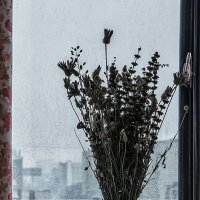 Дождь :: Виктор Зиновьев