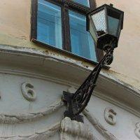 Старое гнездо :: Владимир Л