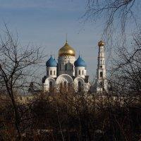 Николо-Угрешский монастырь :: Григорий