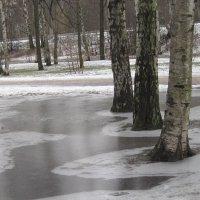 Зимой в парке :: Маера Урусова