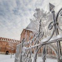 Зима :: Алексей Содоль