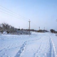Экскурсия в Гадюкино зимой (9) :: Александр Резуненко
