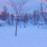 рыбалка на льду :: linnud