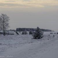 зимняя дорога :: Константин Шабалин