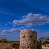 Башня Изборской крепости :: Владислав Лопатов