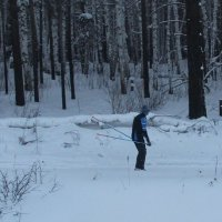 На лыжне. :: Андрей