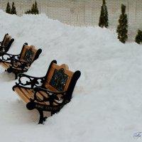 Утонули в снегу :: °•●Елена●•° Аникина♀