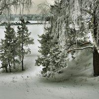 У деревни :: Владимир