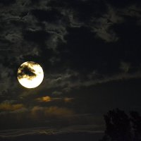 Полнолуние в ненастную ночь... :: Aлександр **
