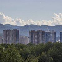 Город в зелени :: Сергей Щербинин