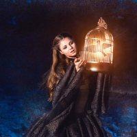 Птица :: Ирина Боярко