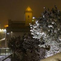 Зимний вечер в Нарве :: leo yagonen