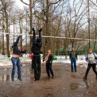 Зимний воллейбол :: Михаил Вандич